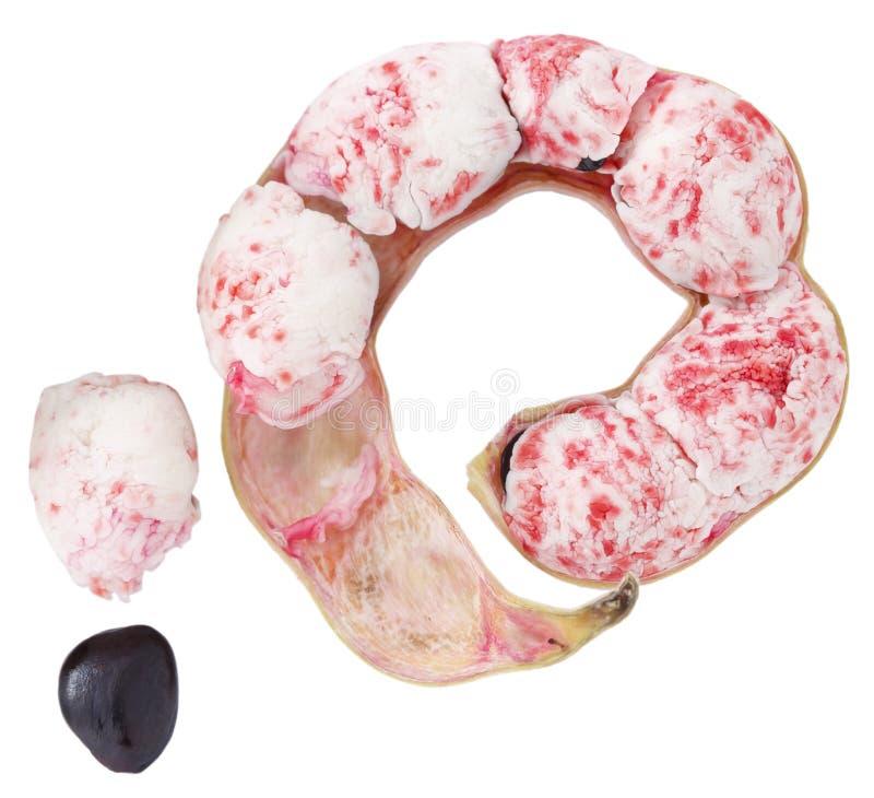Manila. Tamarind fruit isolated on white royalty free stock image