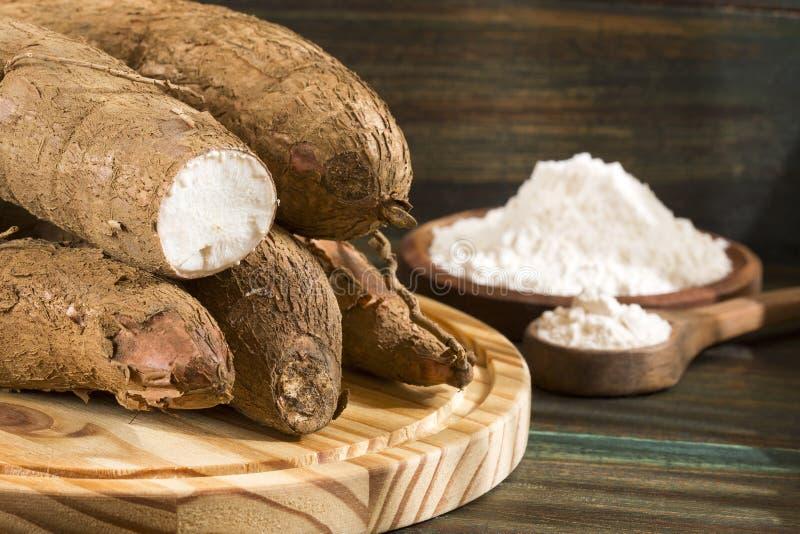 Manioc esculenta de Manihot, yuca, manioc, mandioca, marante arundinacée brésilienne et tapioca sur le fond en bois image libre de droits