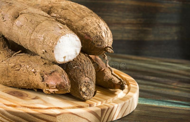 Manioc esculenta de Manihot, yuca, manioc, mandioca, marante arundinacée brésilienne et tapioca sur le fond en bois Foyer sélecti images stock