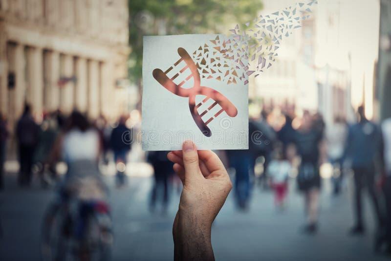 Manipulación genética y concepto de la modificación de la DNA como mano humana que sostiene un papel con símbolo que corrige del  foto de archivo libre de regalías