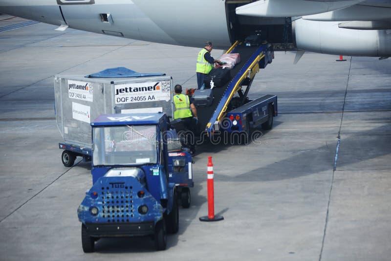 Manipuladores de equipaje de American Airlines que cargan el equipaje en el aeropuerto internacional de Miami imagenes de archivo