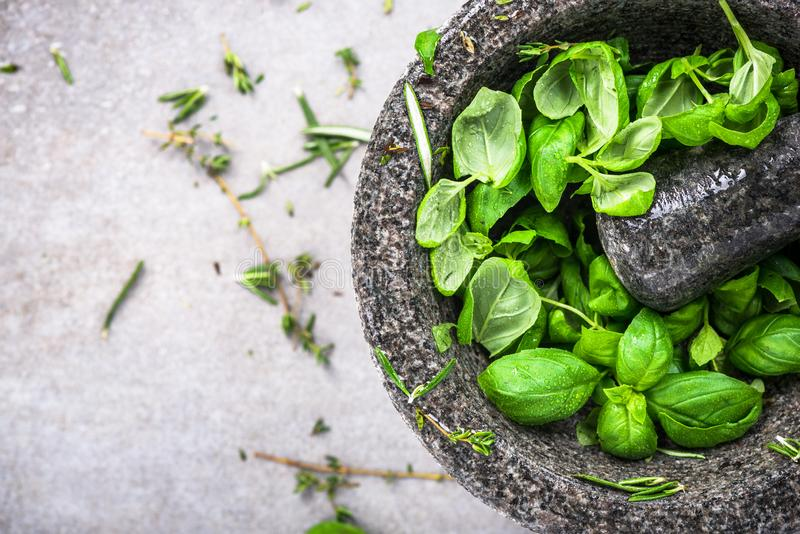 Manjericão orgânica fresca no pilão ou no almofariz concreto imagem de stock royalty free