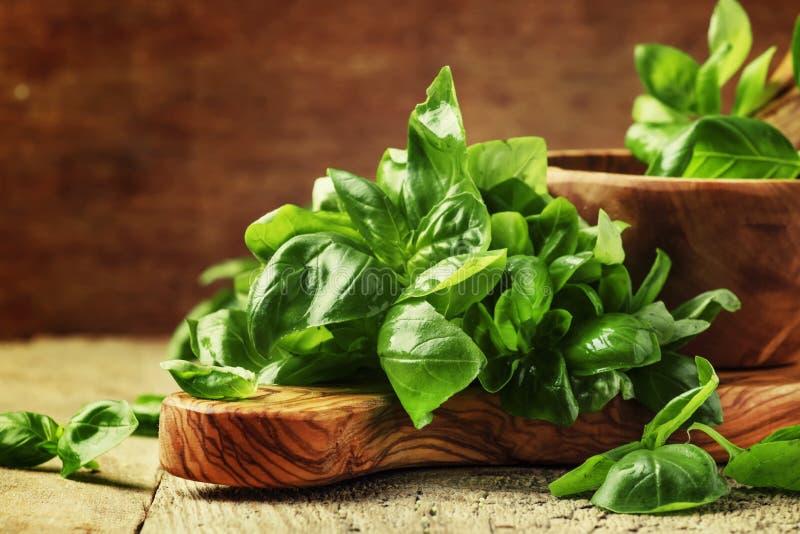 Manjericão verde fresca no almofariz verde-oliva com pilão, vagabundos de madeira do vintage imagem de stock