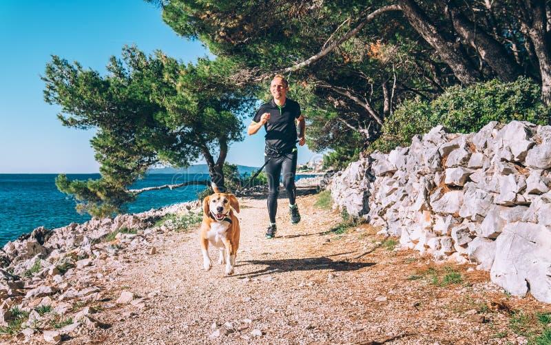 Mankörningar med hunden nära havet arkivbilder