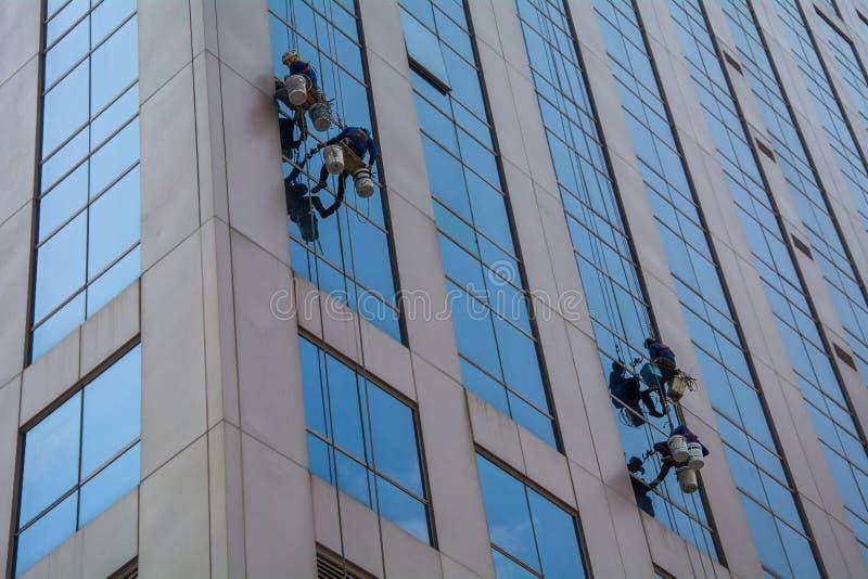 Manlig arbetare i packning för exponeringsglas för overaller yrkesmässig mer ren arkivbild