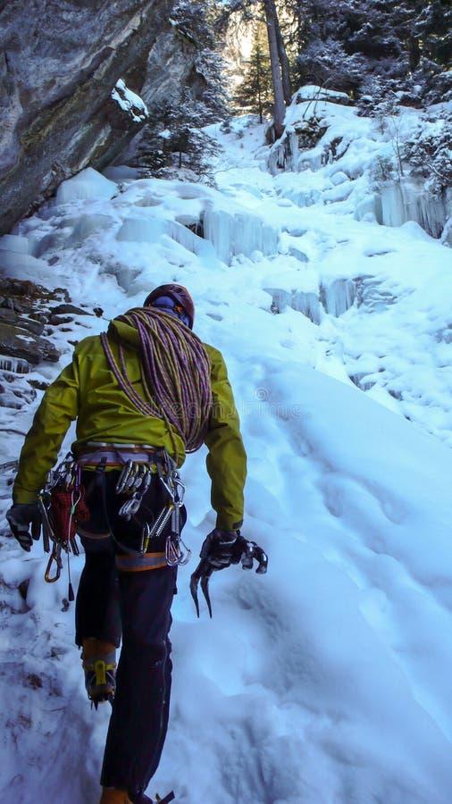 Manlig berghandbok som att närma sig en brant fryst vattenfall efter en isklättringutfärd royaltyfria foton
