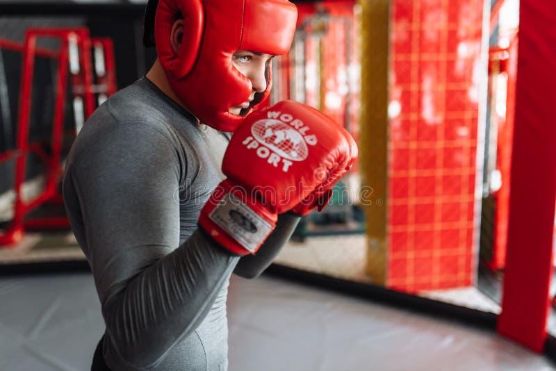 Manlig boxare som är förlovad i utbildning i idrottshallen, i en bur för en kamp utan regler, boxninglagledare fotografering för bildbyråer