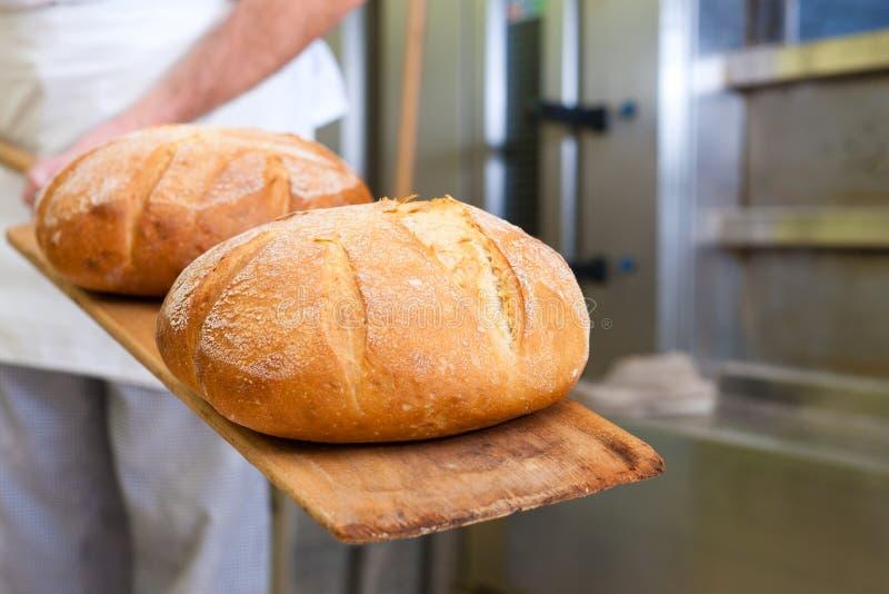 manlig för bagarebakningbröd arkivbilder