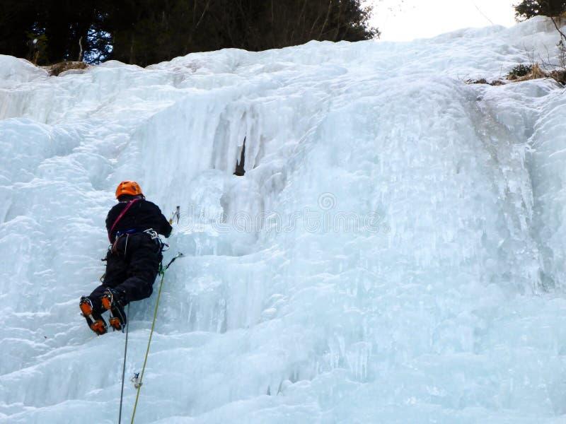 Manlig is för berghandbokledning som klättrar en djupfryst vattenfall i djup vinter i fjällängarna av Schweiz royaltyfri foto