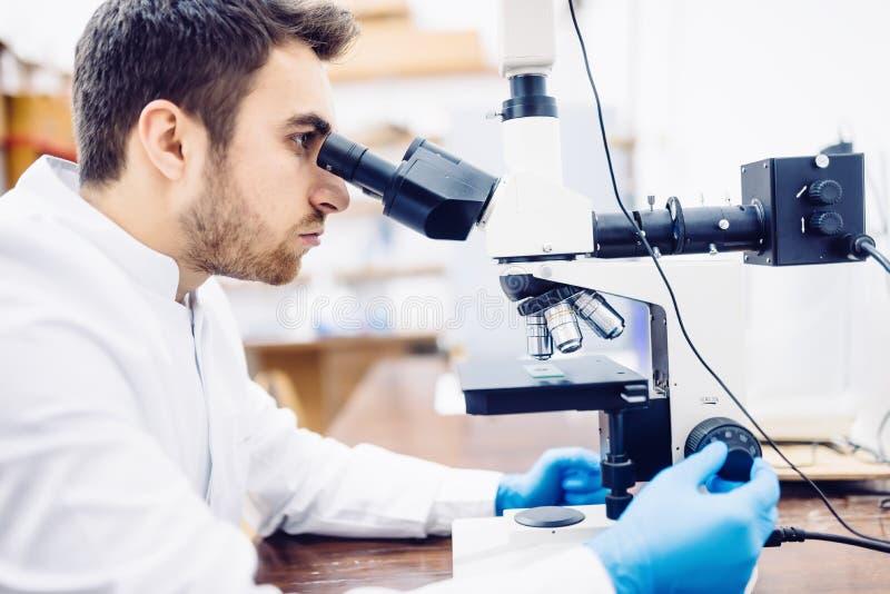 Manlig forskare, kemist som arbetar med mikroskopet i det farmaceutiska laboratoriumet, examinating prövkopior arkivfoto