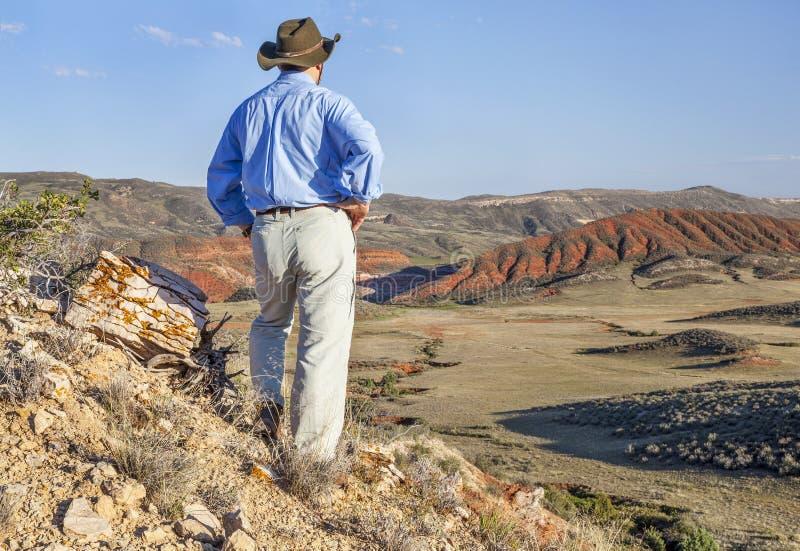 Manlig fotvandrare i rött berg arkivfoton