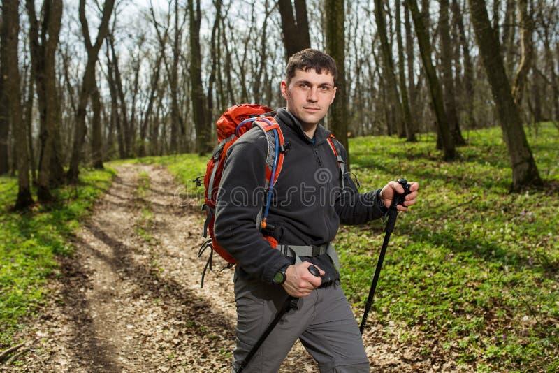 Manlig fotvandrare som ser till sidan som går i skog fotografering för bildbyråer