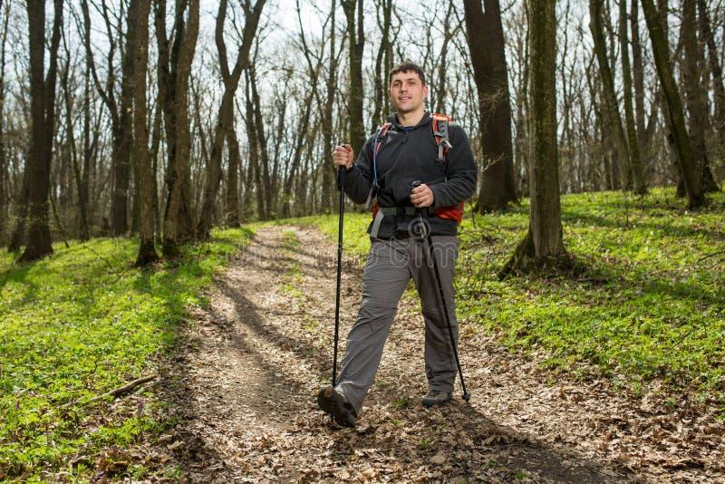 Manlig fotvandrare som ser till sidan som går i skog royaltyfria foton