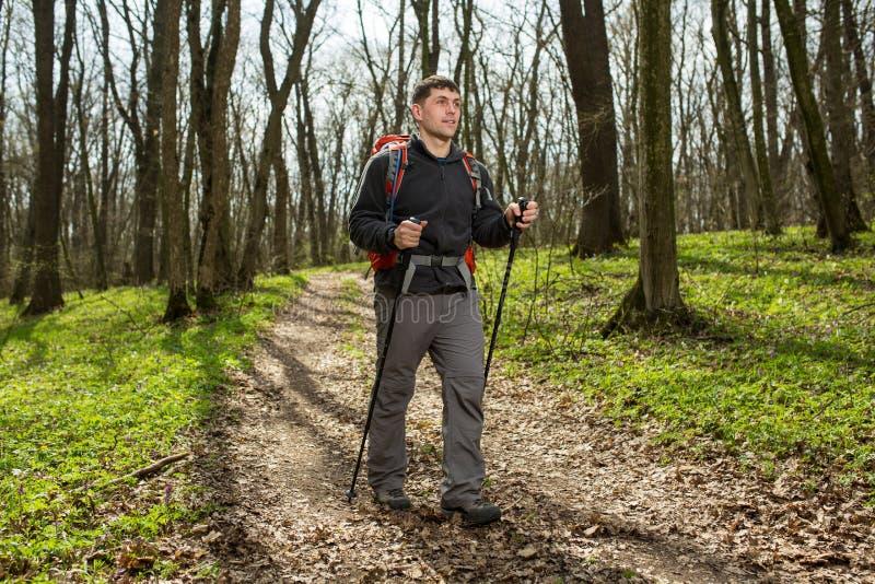 Manlig fotvandrare som ser till sidan som går i skog royaltyfria bilder