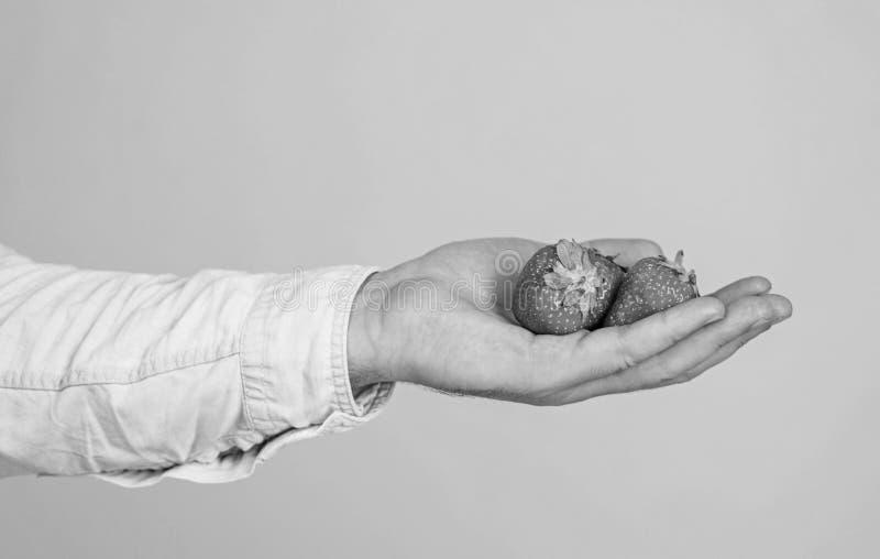 Manlig hand med bl? bakgrund f?r jordgubbar Hj?lp dig Handen f?resl?r tagandejordgubben Tagandejordgubbe, om du ?nskar arkivfoto