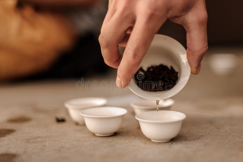 Manlig hand som häller nytt te från porslinkoppen in i små krukor royaltyfri foto