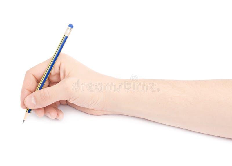 Manlig hand som rymmer en blyertspenna royaltyfria bilder