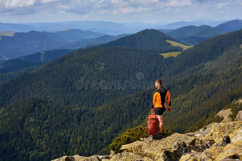 Manlig handelsresande från baksida i bergen arkivbild
