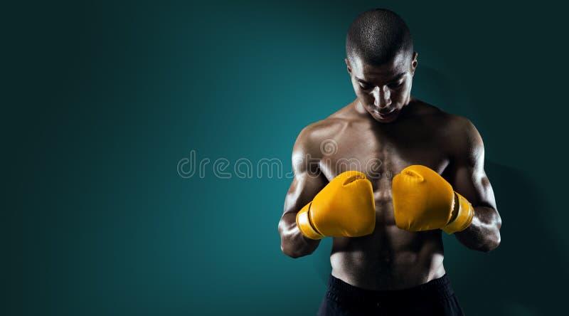 Manlig idrottsman nen Boxer Punching arkivbild