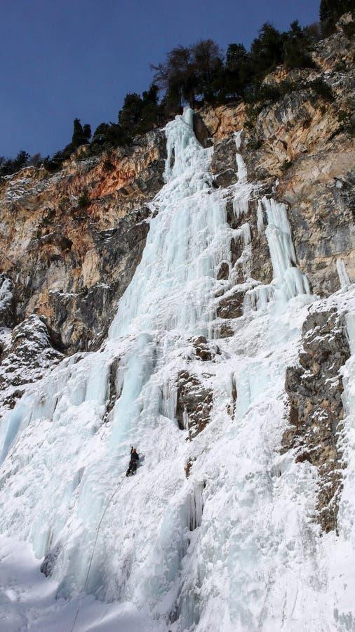 Manlig isklättrare på en brant fryst vattenfall på en härlig vinterdag i de schweiziska fjällängarna royaltyfria bilder