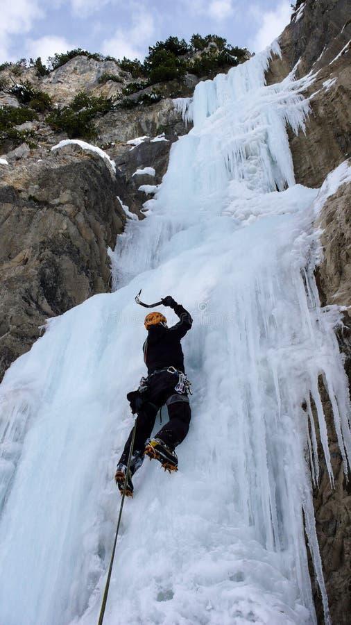 Manlig isklättrare på en brant fryst vattenfall på en härlig vinterdag i de schweiziska fjällängarna royaltyfri foto