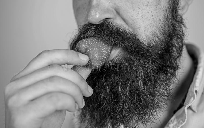 Manlig jordgubbe för framsidaskäggförsök Omgiven skäggmustasch för bär manlig mun Gastronomiskt nöje Lustbegrepp muntligt royaltyfria foton