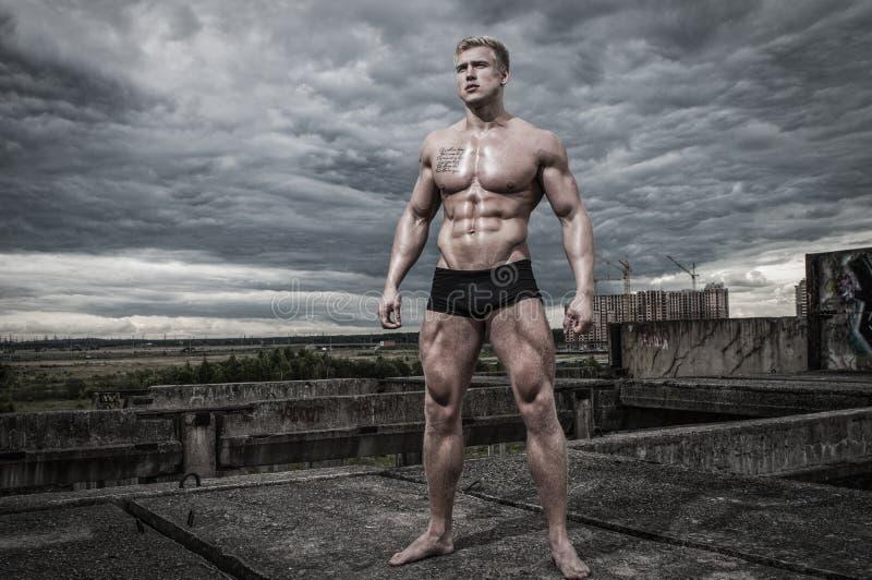 Manlig kroppsbyggare arkivbild