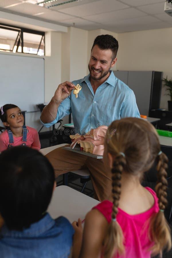 Manlig lärare som förklarar den anatomiska modellen i klassrum royaltyfri fotografi