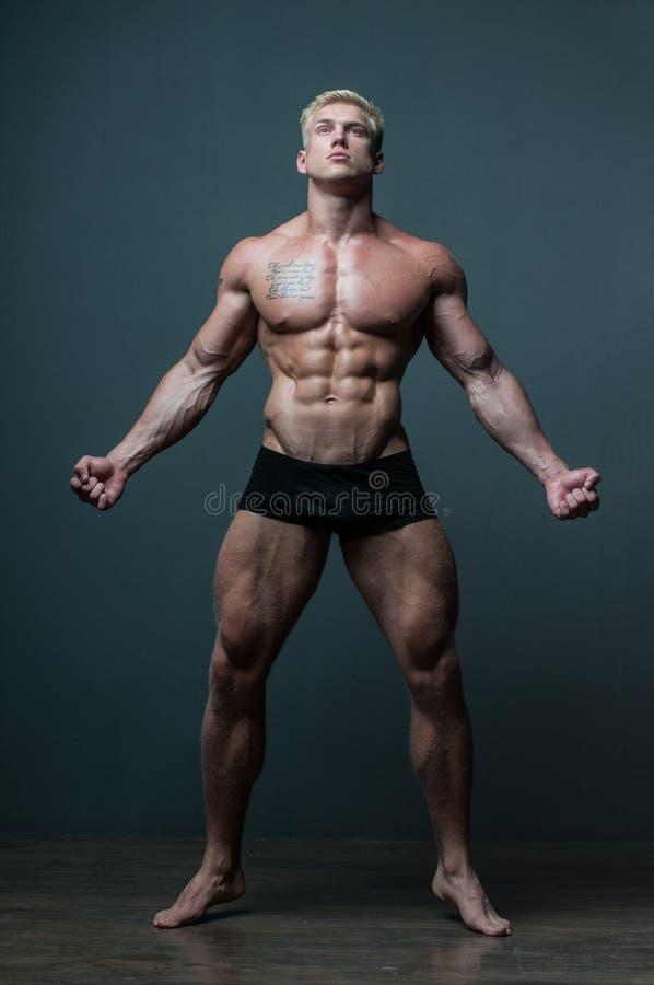 Manlig modell Serge Henir royaltyfri foto