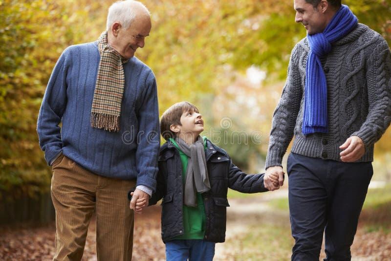 Manlig Multl utvecklingsfamilj som promenerar Autumn Path royaltyfri fotografi