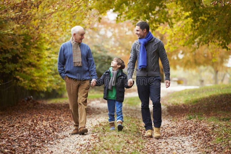 Manlig Multl utvecklingsfamilj som promenerar Autumn Path arkivbilder