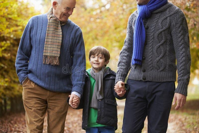 Manlig Multl utvecklingsfamilj som promenerar Autumn Path arkivfoton
