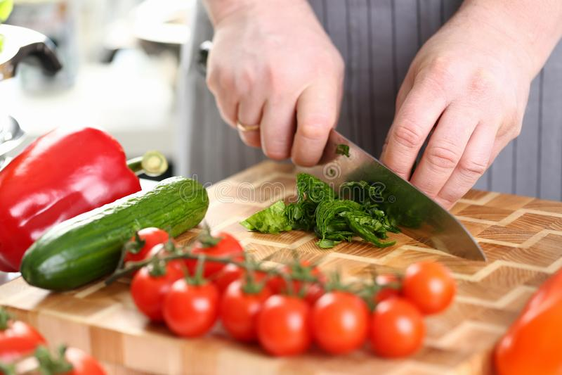 Manliga händer som klipper gröna aromatiska Sorrel Leaf arkivfoton