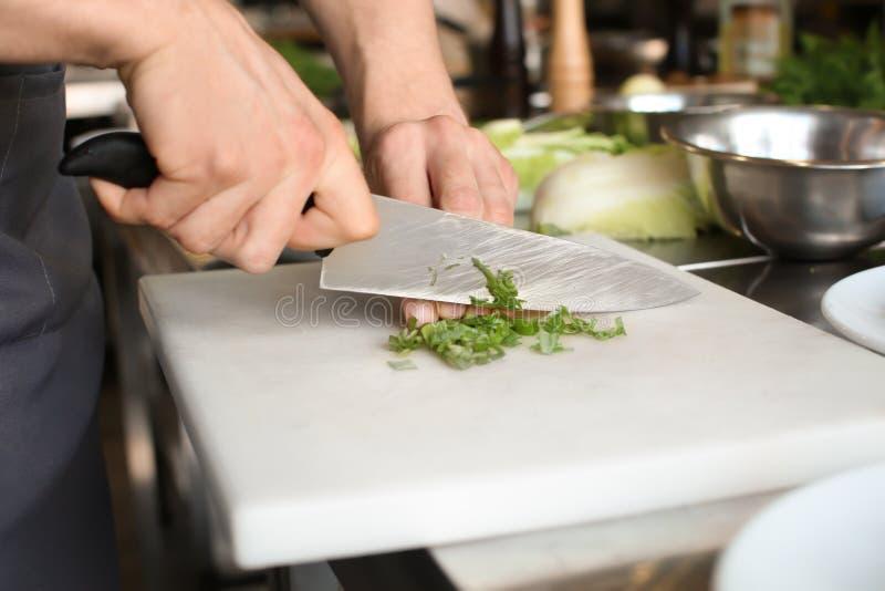 Manliga kockklippsalladslökar, closeup arkivbilder