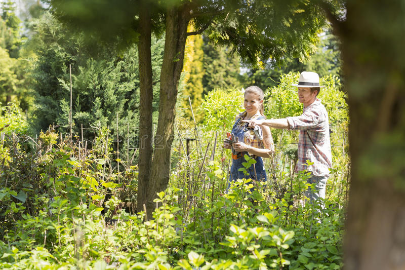 Manliga och kvinnliga trädgårdsmästare som diskuterar över växter på växtbarnkammaren arkivfoto
