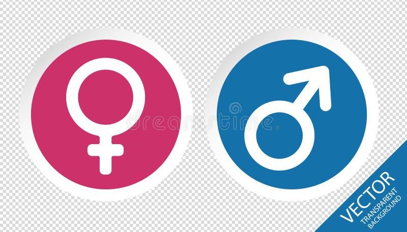 Manligt och kvinnligt könsbestämma knappar - vektorillustration - på genomskinlig bakgrund vektor illustrationer