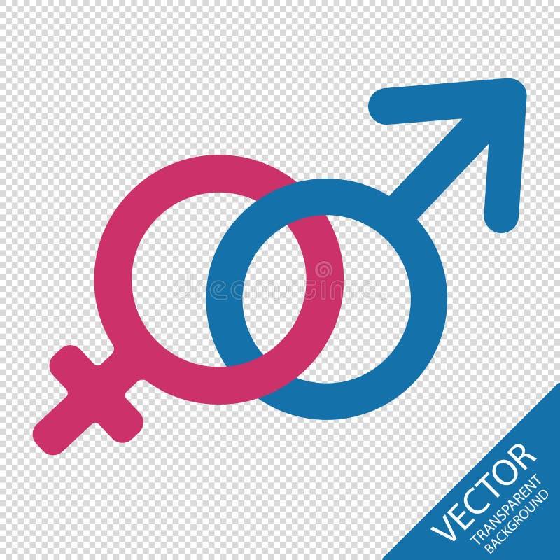 Manligt och kvinnligt könsbestämma symboler - vektorillustration - som isoleras på genomskinlig bakgrund vektor illustrationer