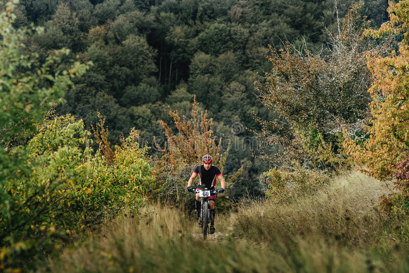 Manligt rida för ryttarecyklist som är stigande bland trän och gräs arkivfoto