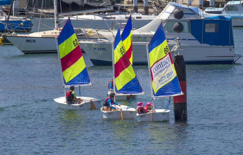 MANLY, AUSTRALIA-DECEMBER 19TH 2013: Children learning the basic. S of sailing in dinghies in Manly harbour. Sailing is a very popular sport in Australia royalty free stock photos