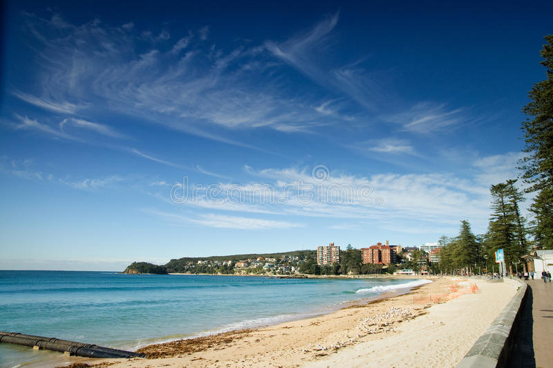 Download Manly Beach stock image. Image of blue, australia, scenic - 18194803