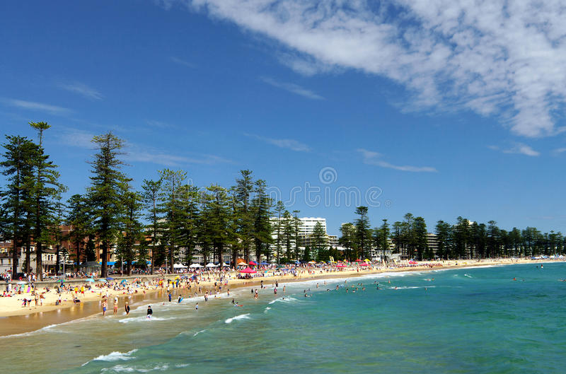 Download Manly Beach stock photo. Image of office, surfboard, marine - 18440120