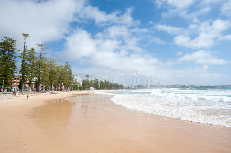 Manly Beach, Australia. This image shows the suburb of Manly, near Sydney, Australia royalty free stock photo