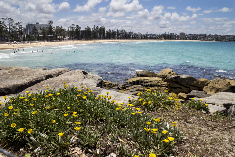 Manly Beach. Sydney NSW,Australia from the rocks stock images
