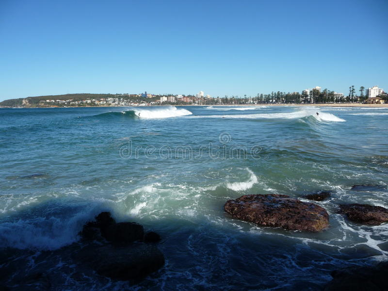 Manly surfers. Taken from the rocks at Queenscliff and looking back along Manly beach, surfers catch the day's waves royalty free stock image