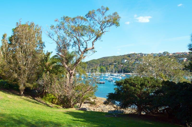 Manly, Sydney. Marina on the coast of Manly, Sydney, Australia stock image
