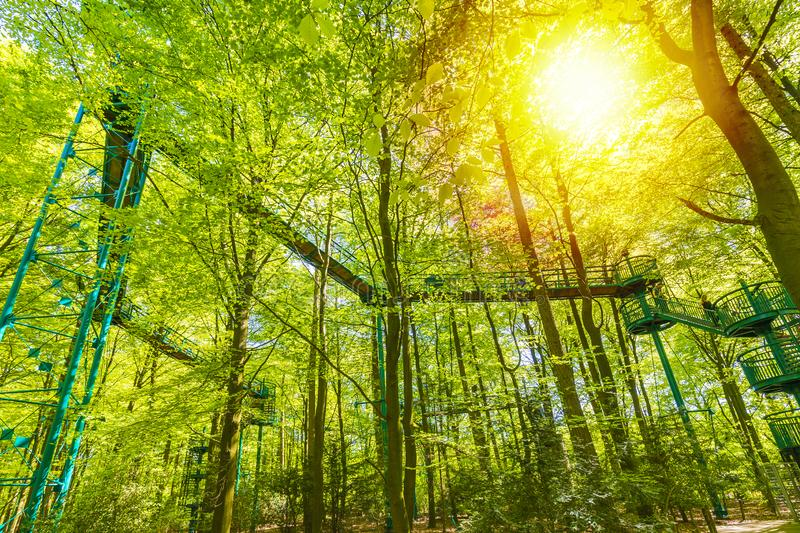 Manmade structure and bridge to experience a treetops adventure challenge in a forest. Manmade structure and bridge to experience a treetops adventure challenge royalty free stock photography