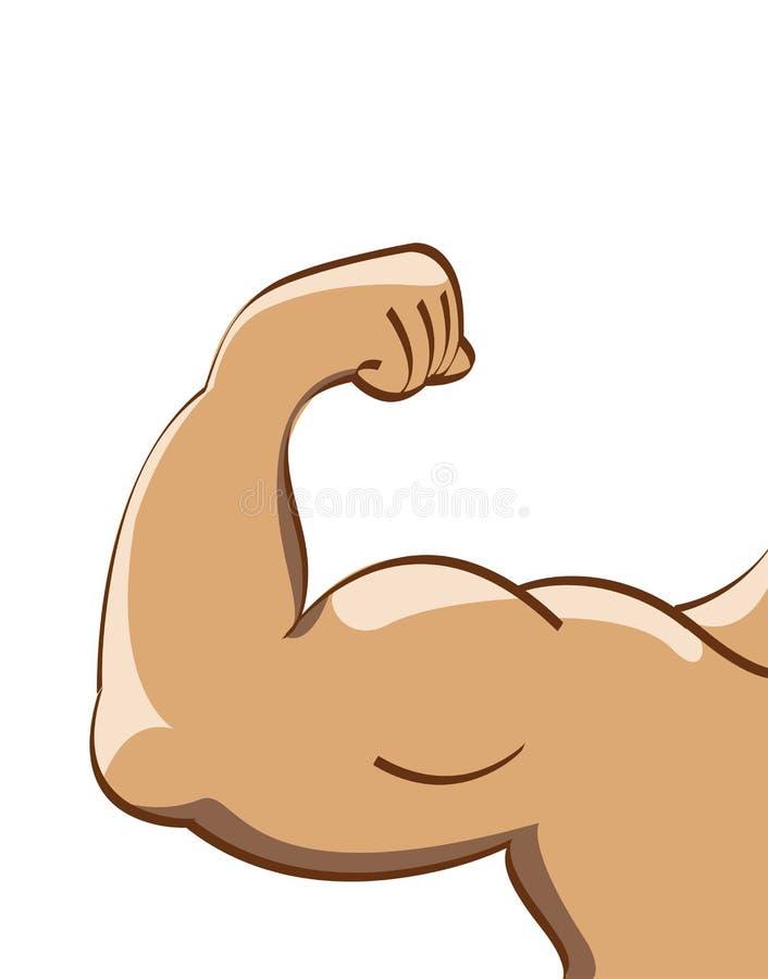 manmuskel vektor illustrationer