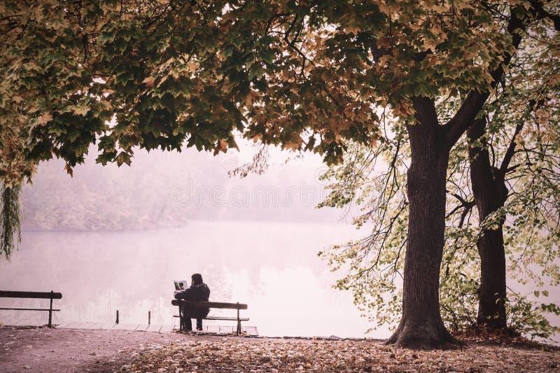 Mann auf Bank im nebeligen Herbstpark lizenzfreie stockbilder