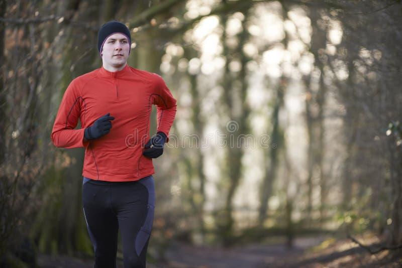 Mann auf dem Winter laufen gelassen durch Waldland stockfoto