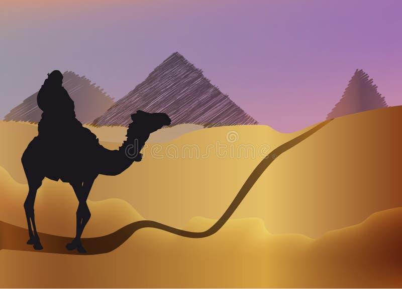Mann auf einem Kamel in der Wüste lizenzfreie abbildung